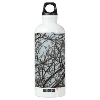 Frost Explosion Water Bottle