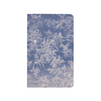 Frost Ice Snow Cold Frozen Frigid Polar Arctic Journal