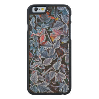 Frost on autumn leaves, Oregon Carved® Maple iPhone 6 Slim Case