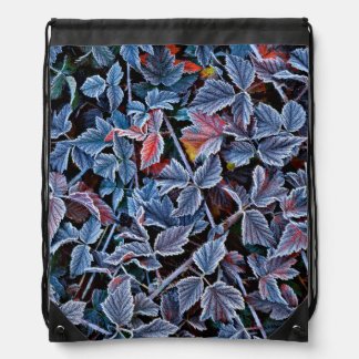 Frost on autumn leaves, Oregon Drawstring Bag