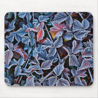 Frost on autumn leaves, Oregon Mouse Pad