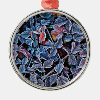 Frost on autumn leaves, Oregon Silver-Colored Round Ornament
