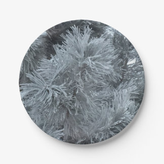 Frost Paper Plate