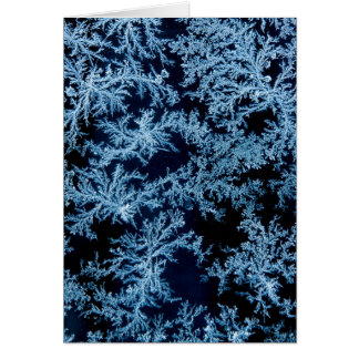 Frost patterns close-up, California Card