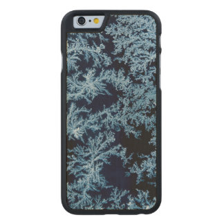 Frost patterns close-up, California Carved Maple iPhone 6 Case