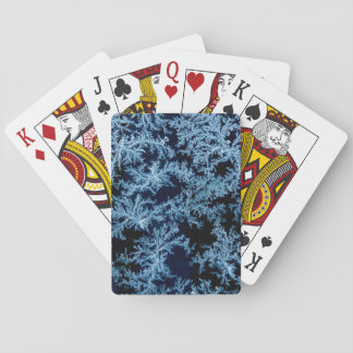 Frost patterns close-up, California Poker Deck