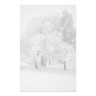 Frost Trees in Fog Stationery