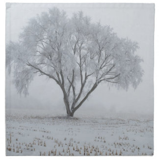 Frost Upon a Lonely Tree Cloth Napkin