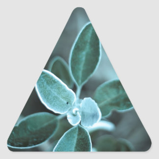 Frosted Leaf Triangle Stickers