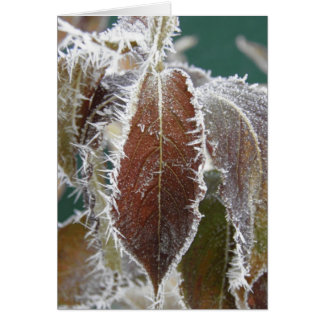 Frosted Leaves Card