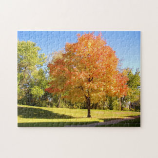 Frostwood Maple Tree View jigsaw puzzle