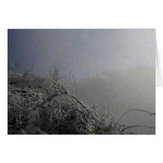 Frosty Falls Card