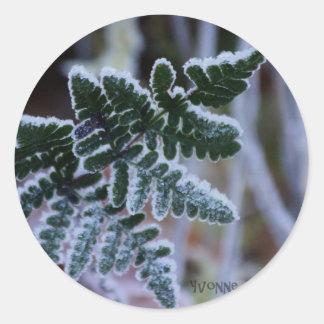 Frosty Fern Round Sticker