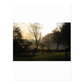 frosty fields 4 postcard