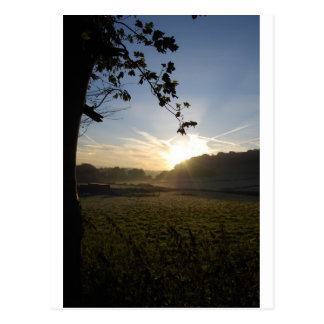 frosty fields postcard