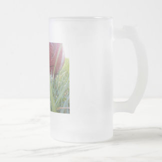 Frosty Football Frosted Glass Beer Mug