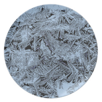 Frosty forest light blue pattern abstract design plate