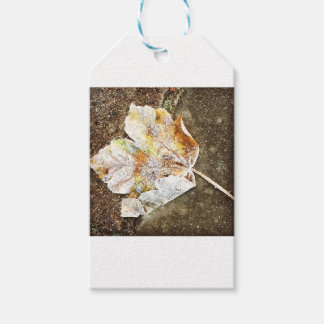 Frosty Leaf Gift Tags