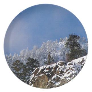 Frosty Mountain Plate