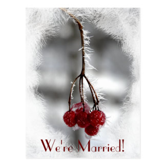 Frosty Red Berries Winter Marriage Announcement Postcard