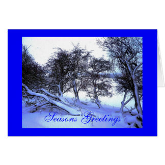 Frosty Wind Made Moan Greeting Card