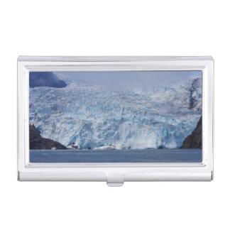 Frozen Beauty Business Card Holder