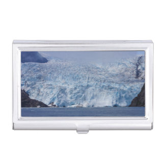 Frozen Beauty Case For Business Cards