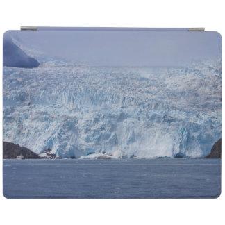 Frozen Beauty iPad Cover