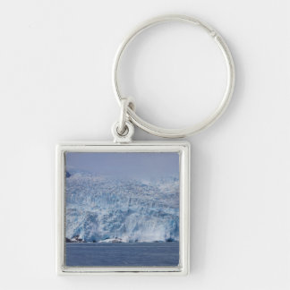 Frozen Beauty Silver-Colored Square Keychain