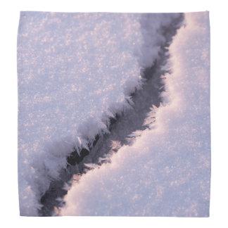 Frozen chasm bandanas