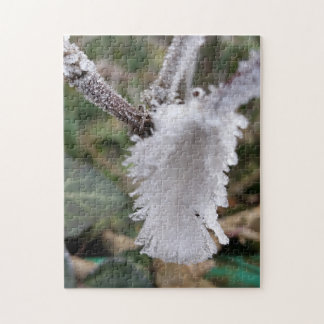 frozen feather jigsaw puzzle