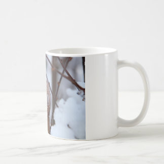 Frozen Snail Shell in Snow Classic White Coffee Mug