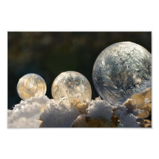 Frozen Soap Bubbles Ice Crystal Winter  Paperprint Photo Print