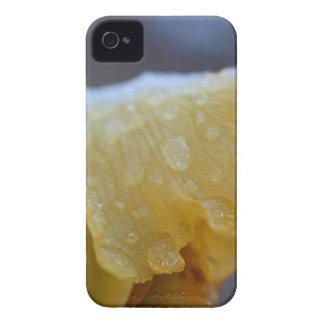 Frozen Veins iPhone 4 Covers