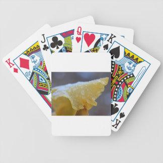Frozen Veins Poker Deck