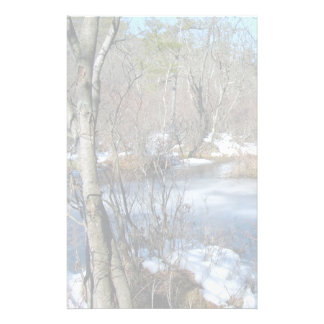 Frozen Wetlands Pond Customized Stationery