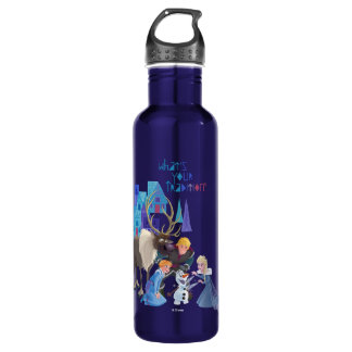 Frozen   What's Your Tradition 710 Ml Water Bottle