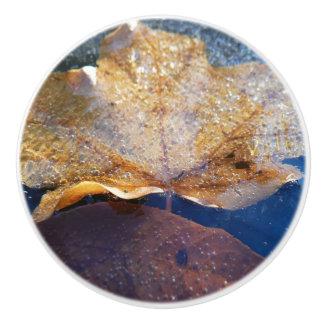 Frozen Yellow Maple Leaf Autumn Nature Ceramic Knob
