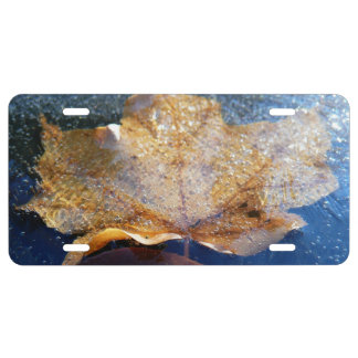 Frozen Yellow Maple Leaf Autumn Nature License Plate