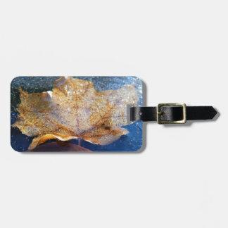 Frozen Yellow Maple Leaf Autumn Nature Luggage Tag