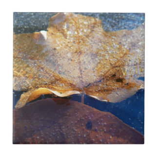 Frozen Yellow Maple Leaf Autumn Nature Tile