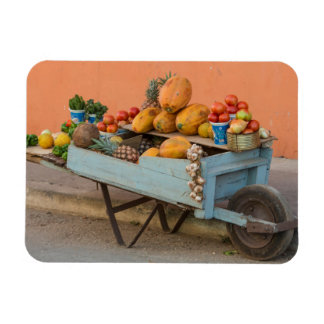 Fruit and vegetable cart, Cuba Rectangular Photo Magnet