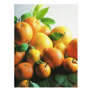 Fruit and vegetables, oranges and lemons postcard