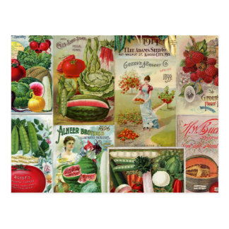 Fruit and Veggies Seed Catalog Collage Postcard