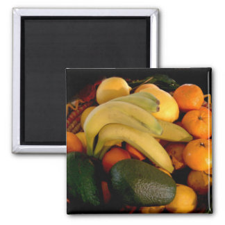 Fruit Basket Magnet