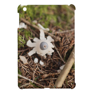 Fruit body of a rayed earthstar (Geastrum quadrifi iPad Mini Covers