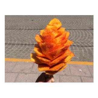 Fruit Flower Postcard