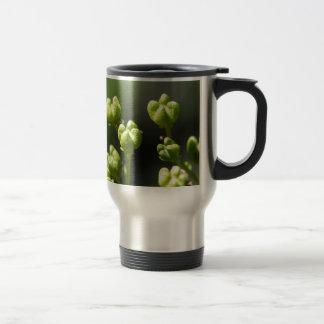 Fruit of a common rue (Ruta graveolens) Travel Mug