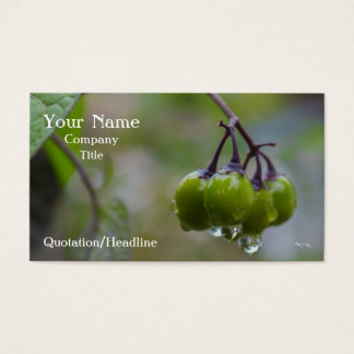 Fruit of Clarity Business Card