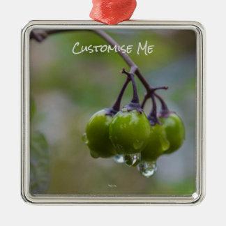 Fruit of Clarity Metal Ornament
